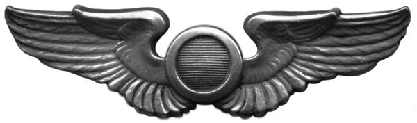 Combat Observer